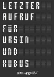 Ursin_und_Kubus